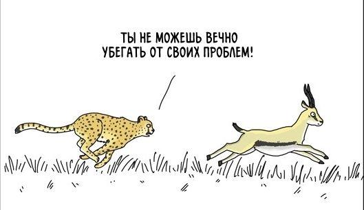 Потапов А.Б. Андросов Андреевский парк банкротство