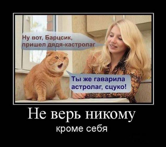 остролог