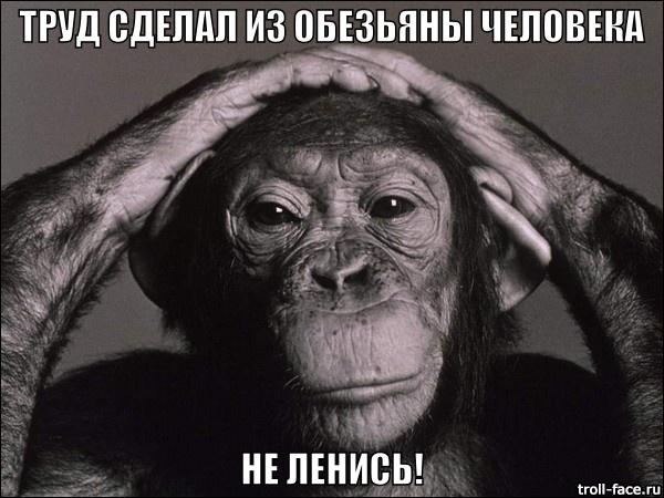 trud-sdelal-iz-obezyanyi-cheloveka-ne-lenis-B7xYDn