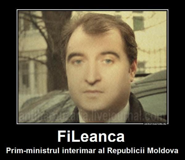 fileanca