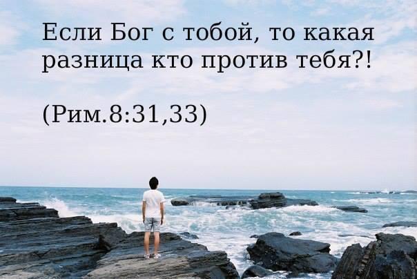 931198_10151679850262489_239527880_n