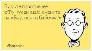 1384027_575799355821394_828290520_n
