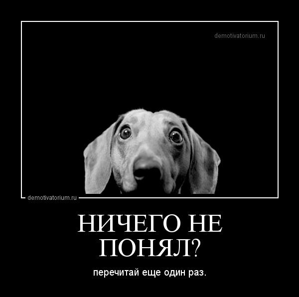 demotivatorium_ru_nichego_ne__ponjal