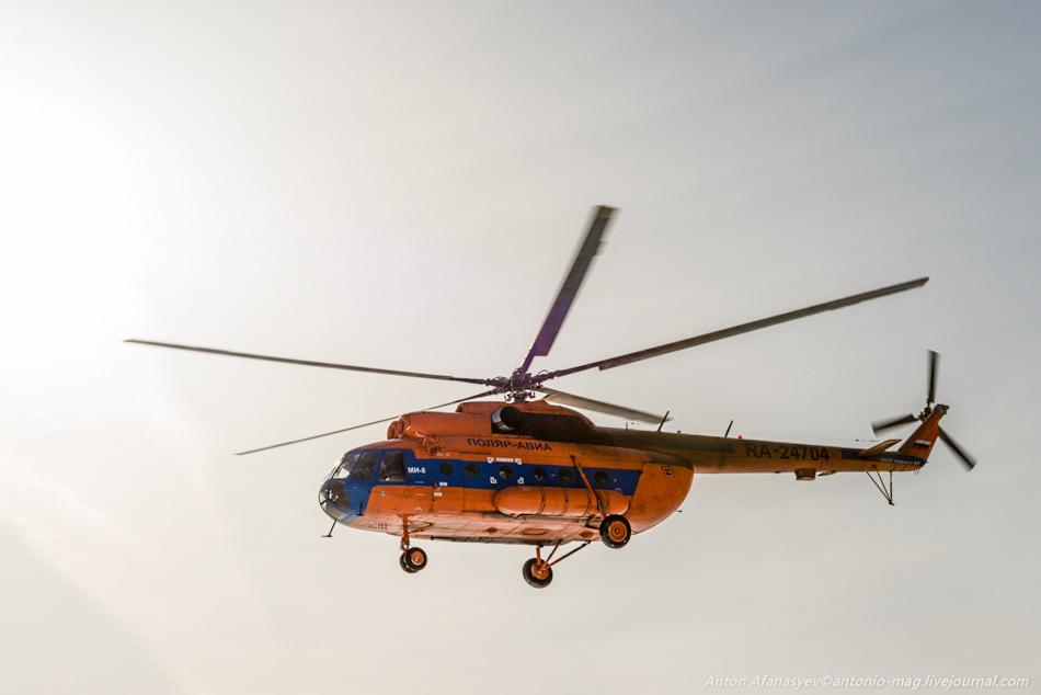 вертолет, ми-8, поляр, авиа