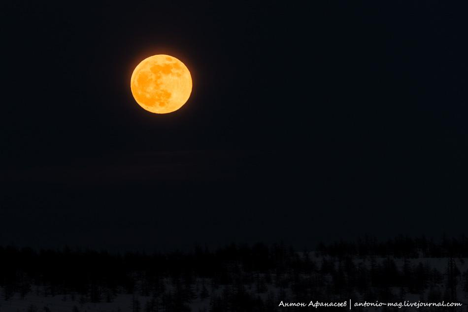 луна, затмение, ночь