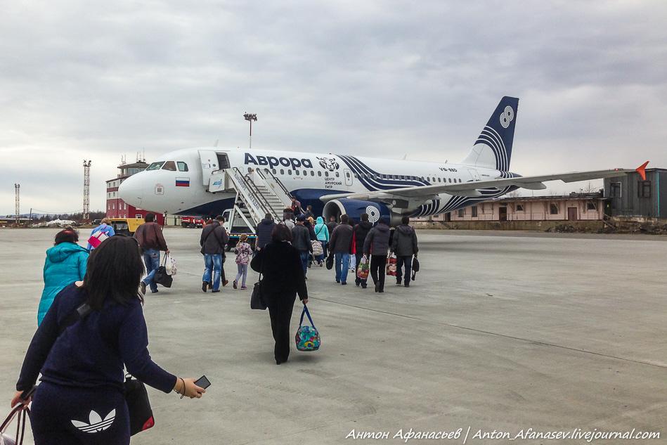 авиакомпания Аврора