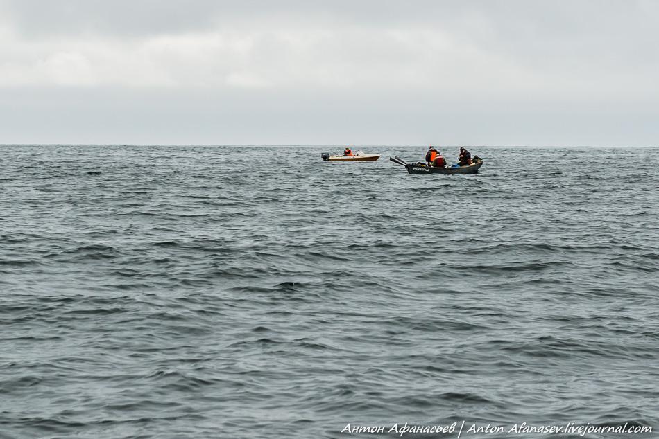 Охотское море, Магадан, август 2015