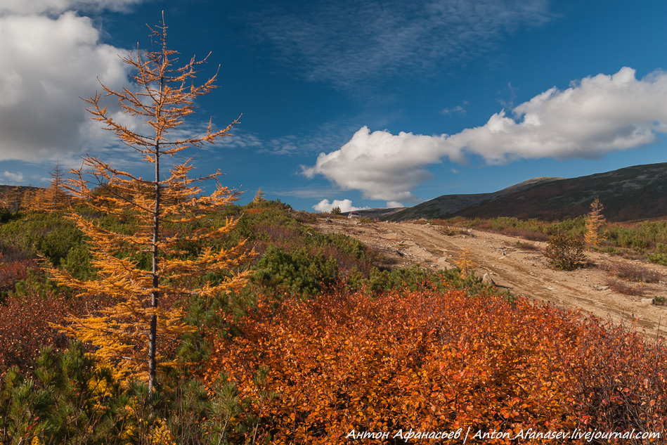 Магаданская область, осень