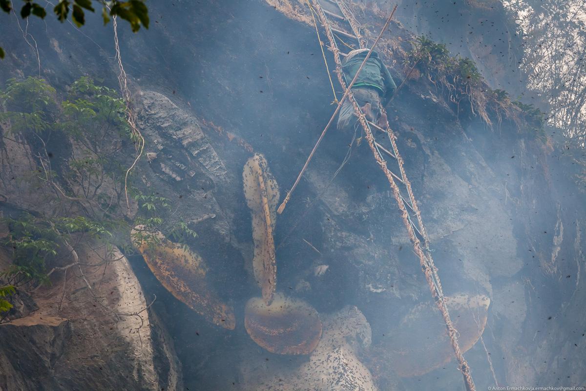 Неизвестные Гималаи. В поисках охотников за медом диких пчёл. Правильная деревня (день 1)