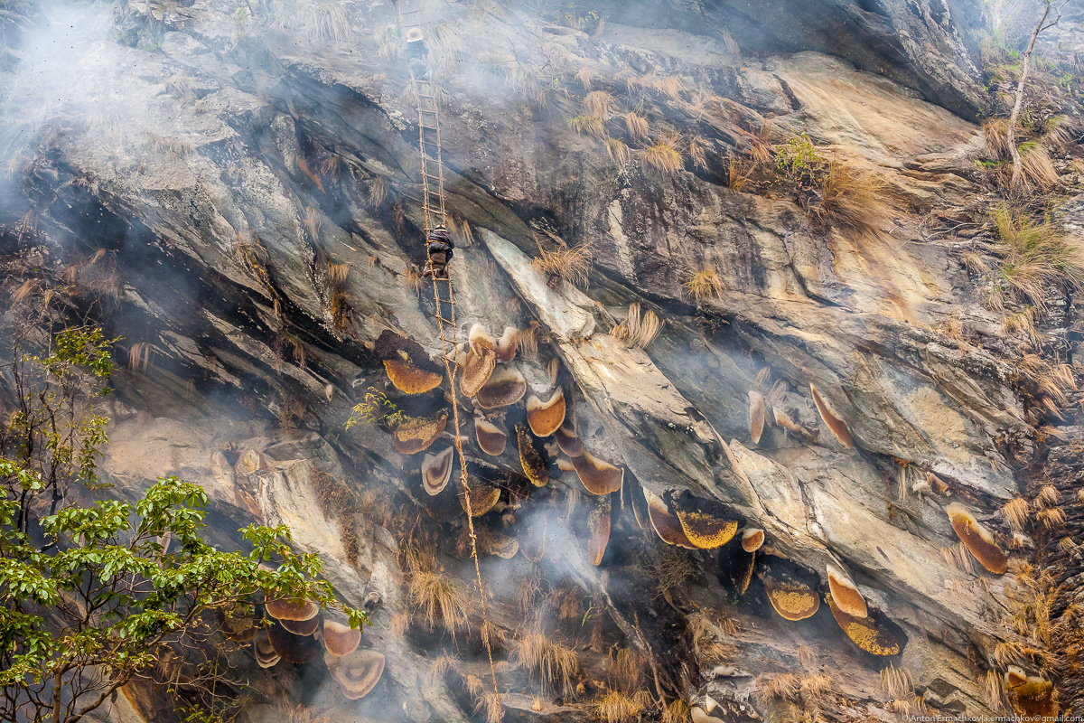 Неизвестные Гималаи. В поисках охотников за медом диких пчёл. Правильная деревня (день 3)