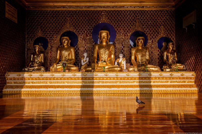 Shwedagon Pagoda (day)-16