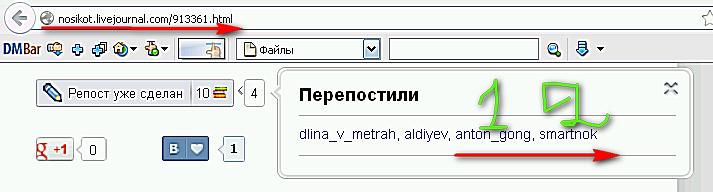 Rekord-ogidaniya-00-2013-01-08_113550