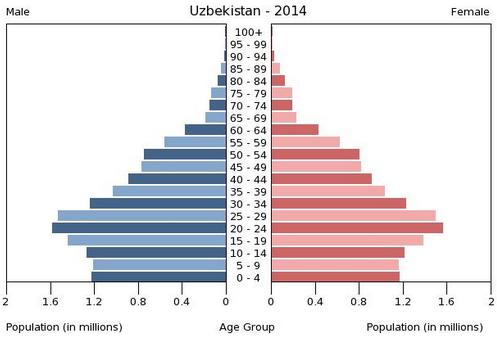 Population_pyramid_UZ