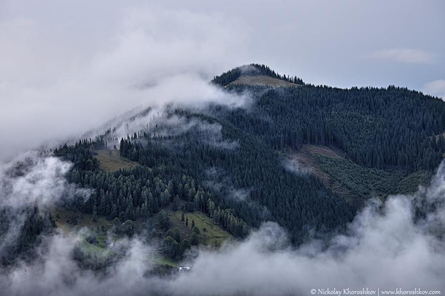 Foggy landscape of Carpathian mountains_4