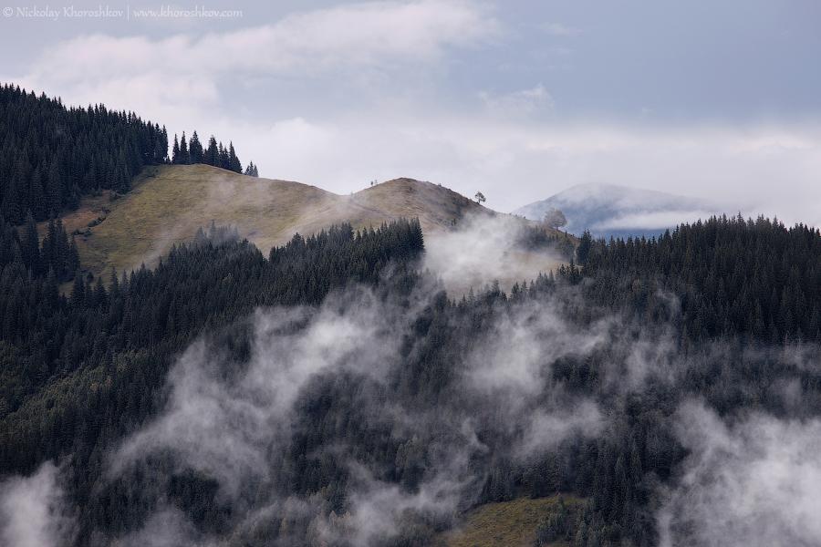 Foggy landscape of Carpathian mountains_15
