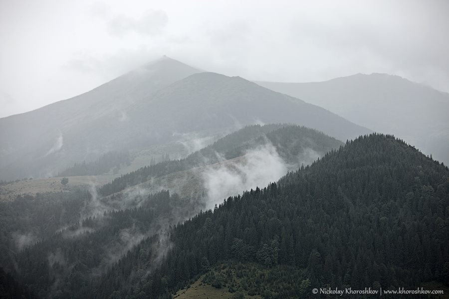 Foggy weather at Carpahian mountains_2