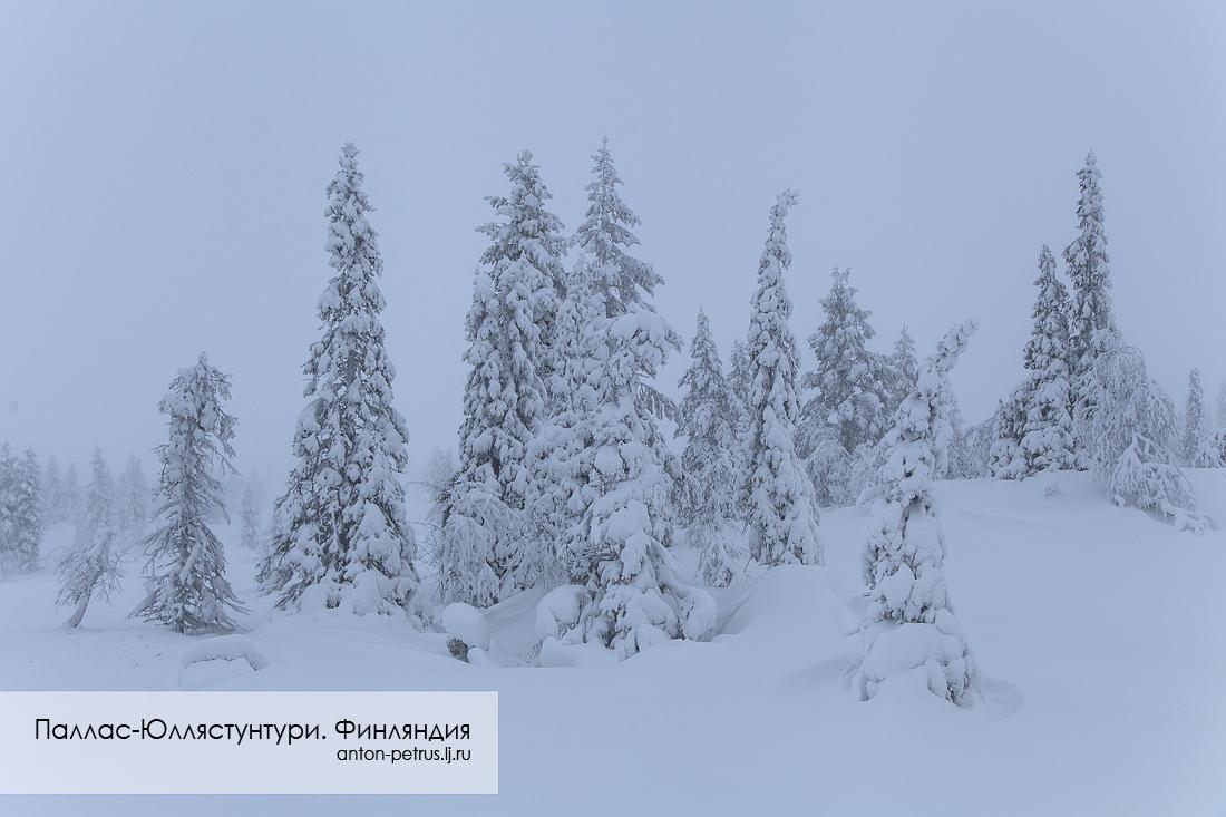 Финляндия (1)