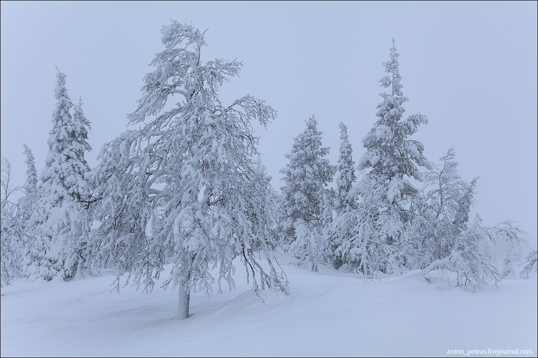 Финляндия (4)