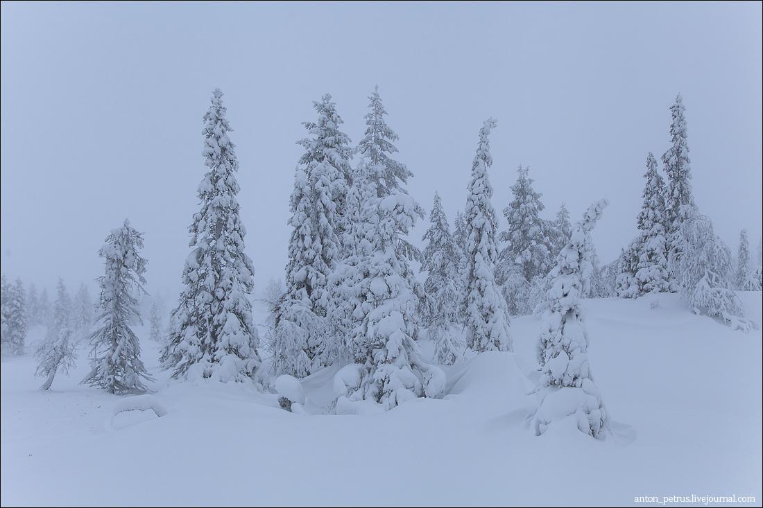 Финляндия (5)