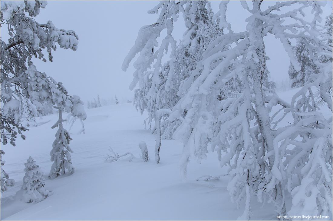 Финляндия (6)