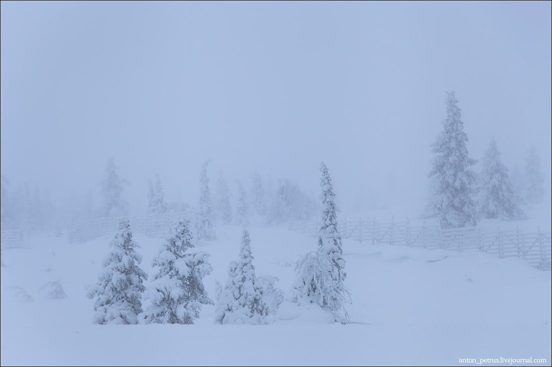 Финляндия (9)