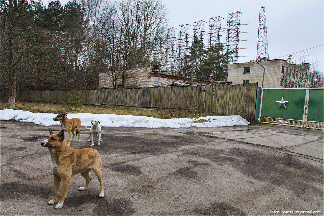 Чернобыль-2 (2)