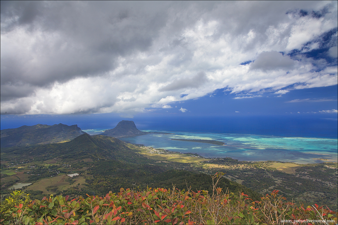 Маврикий (5)