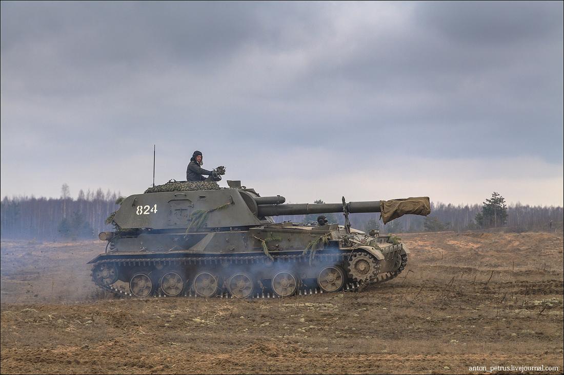 Армия (12)