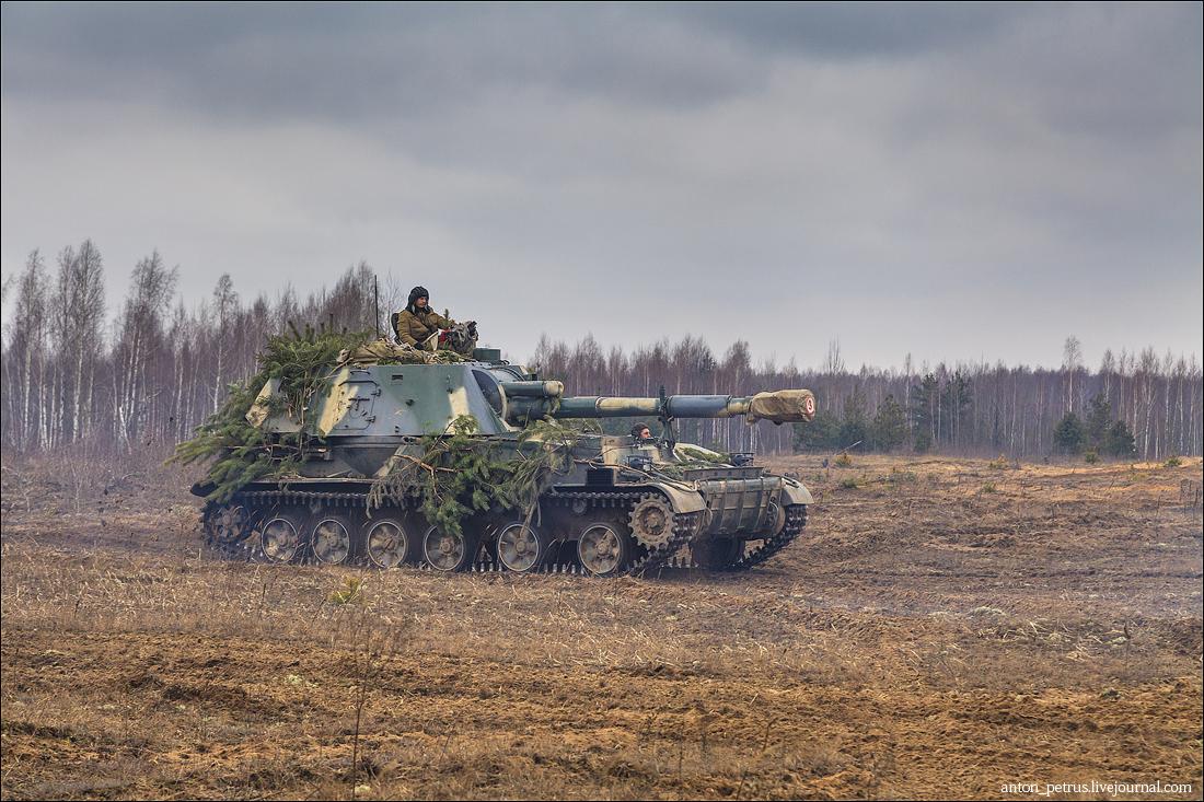 Армия (13)