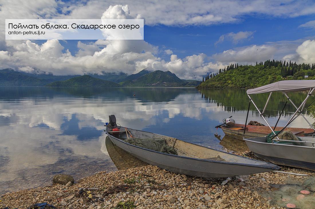 Скадарское озеро (1)