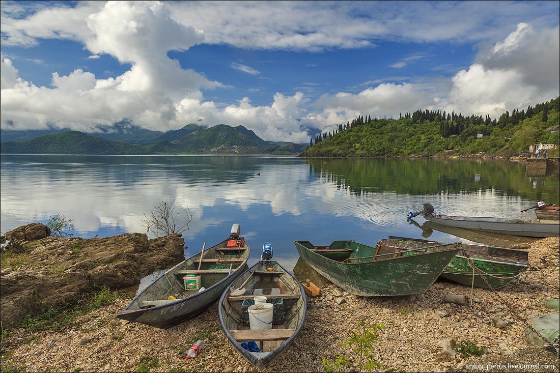 Скадарское озеро (3)