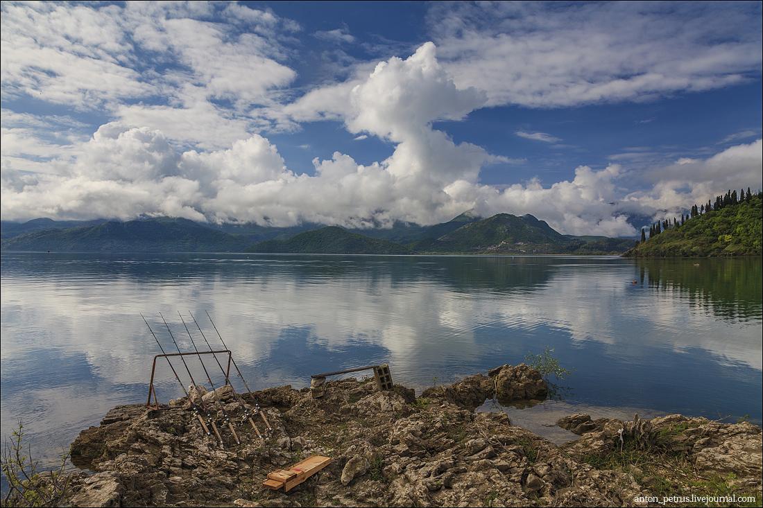 Скадарское озеро (4)