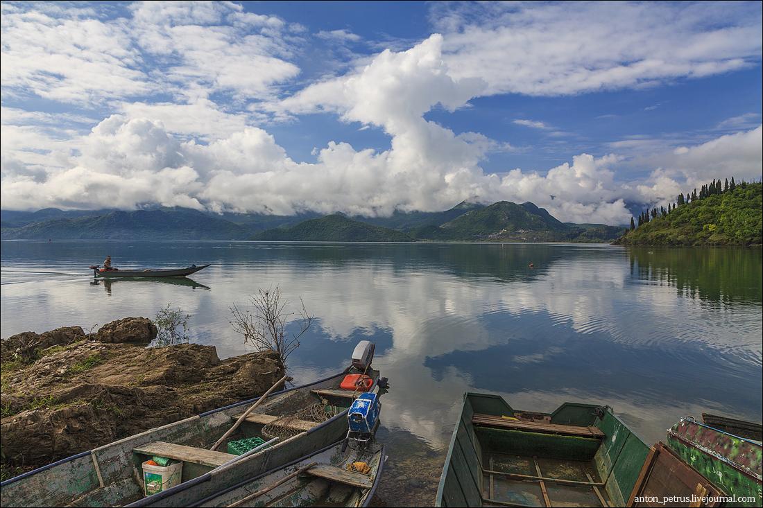 Скадарское озеро (5)