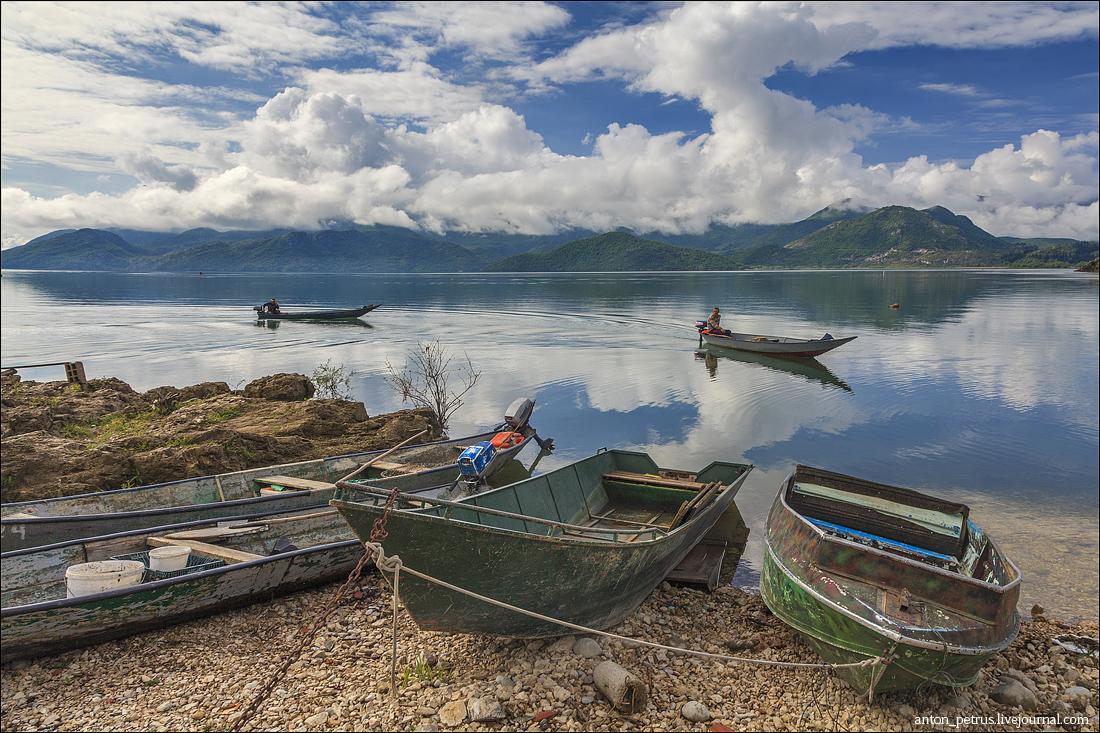 Скадарское озеро (6)