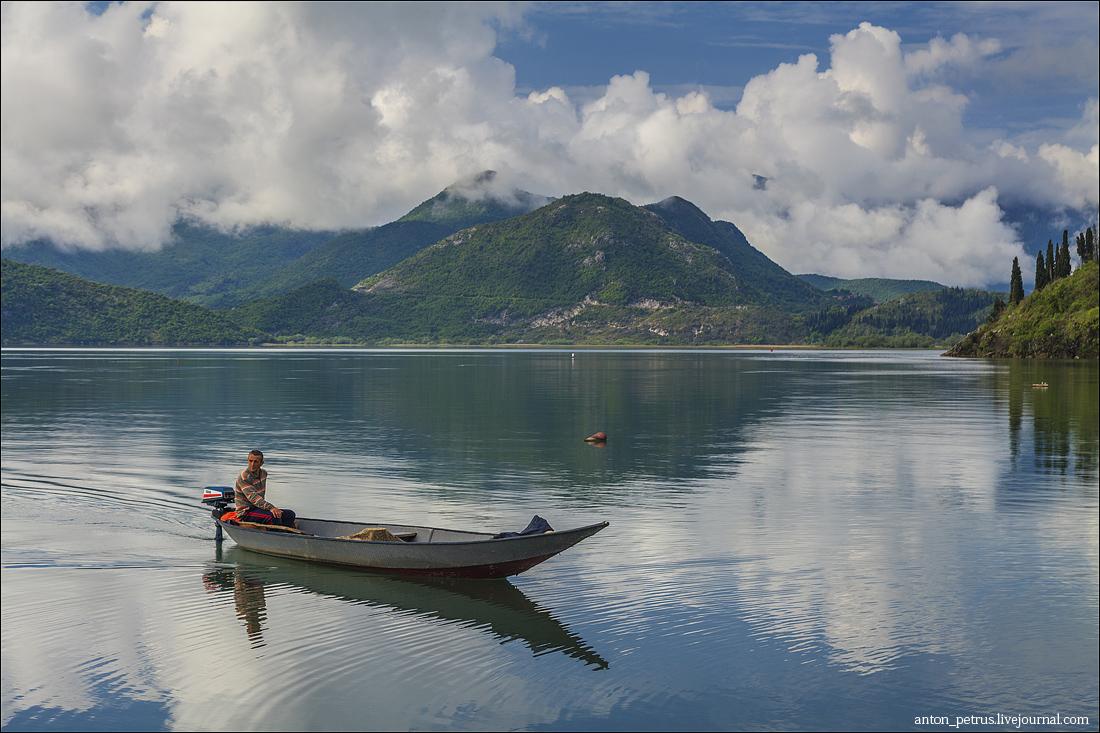 Скадарское озеро (7)