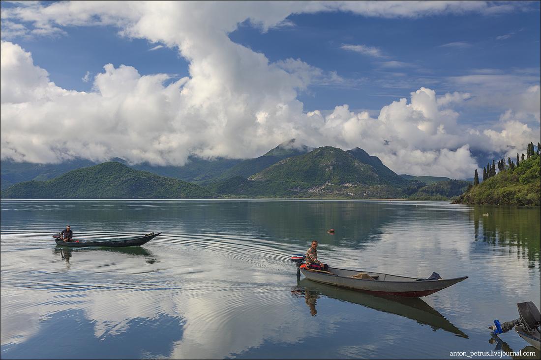 Скадарское озеро (8)