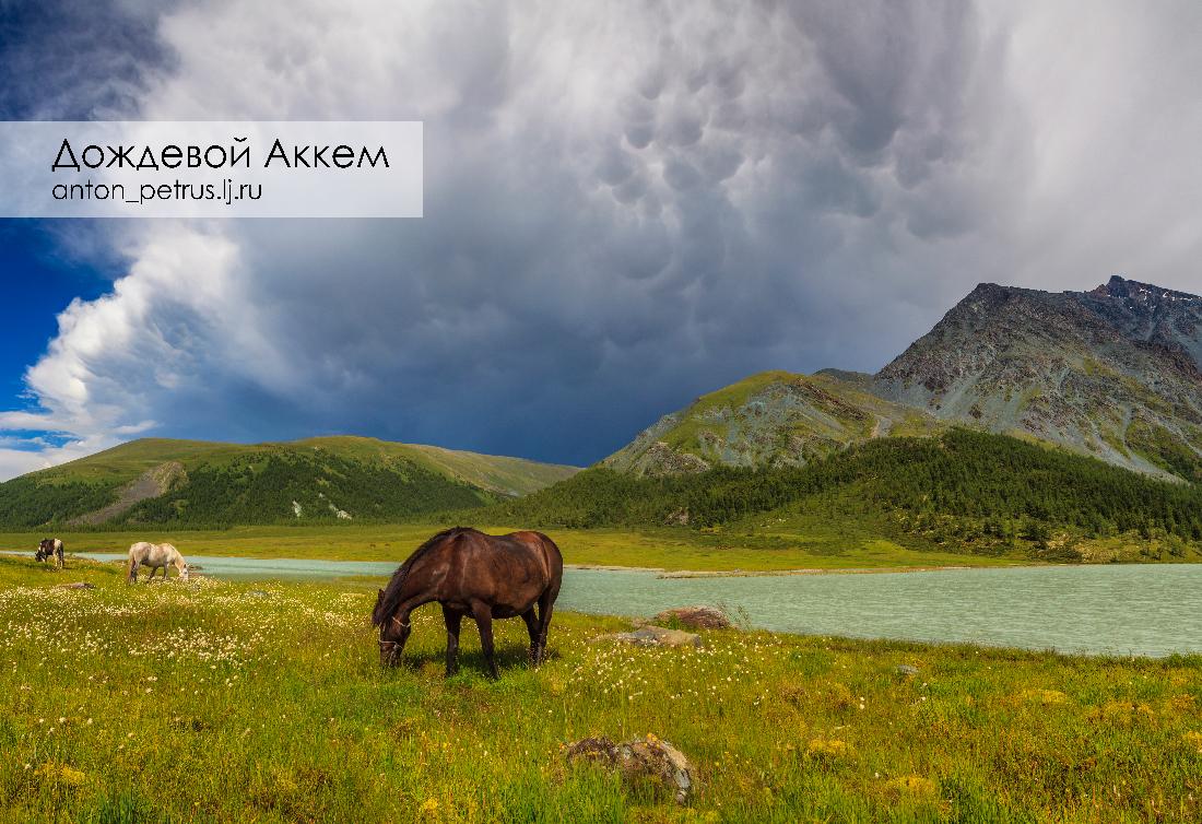 Озеро Аккем, Белуха (1)