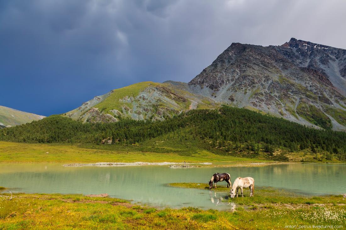 Озеро Аккем, Белуха (5)