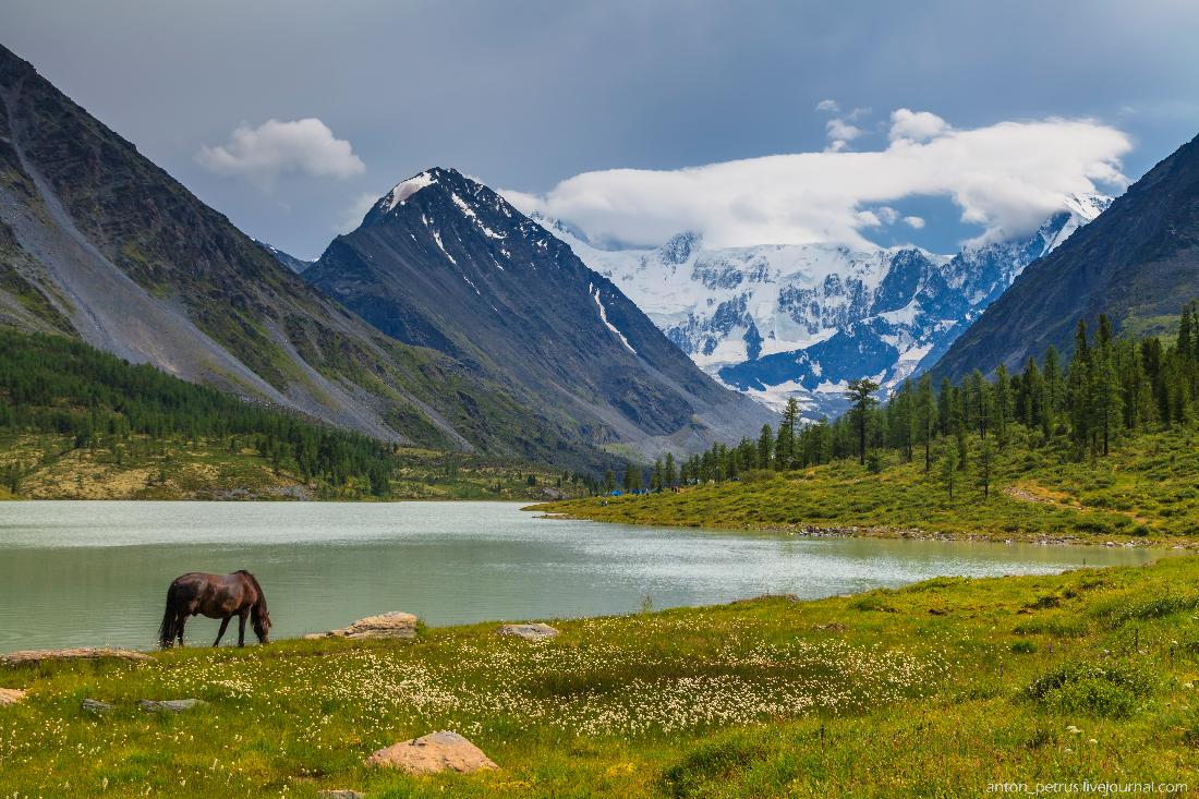 Озеро Аккем, Белуха (6)