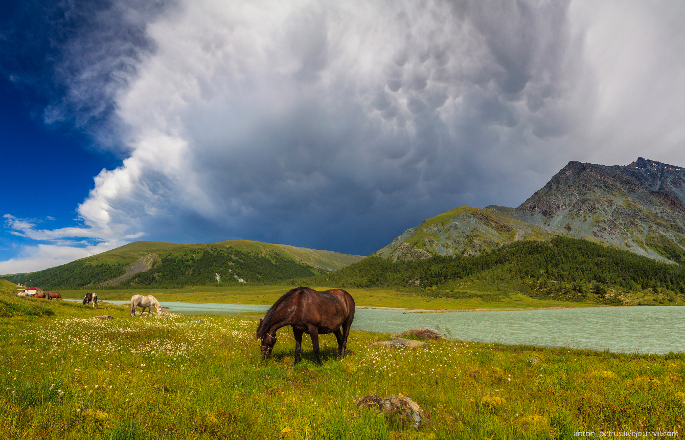 Озеро Аккем, Белуха (12)
