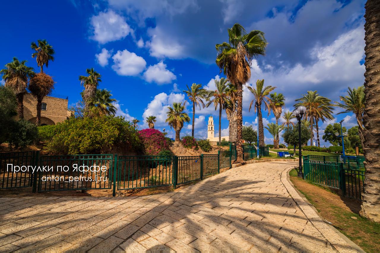 израиль: Прогулка по Яффо. Израиль: Anton_petrus