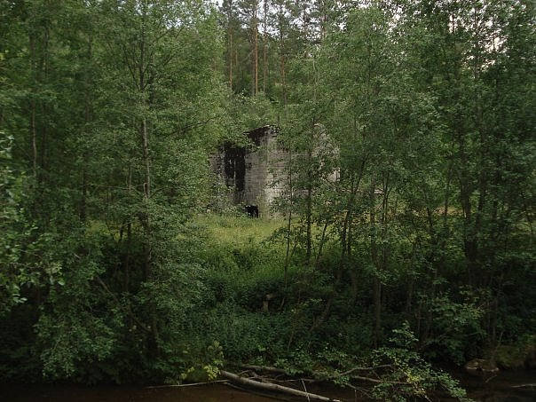 Предположительно то, что осталось от картонной фабрики. Фото из группы VK «Девятины — моя малая родина»