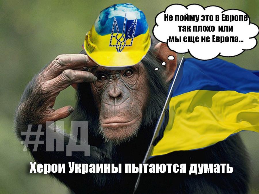 работникам оскорбительные картинки для украинцев барабан