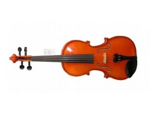 Скрипки студенческие Strunal