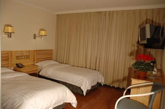 standard room 02
