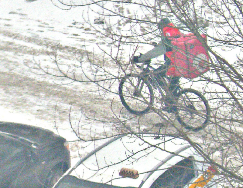 ...А олени лучше! (с) Ну, или велосипед! :)