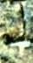 Каменная могила 954 - бесконечное пространство