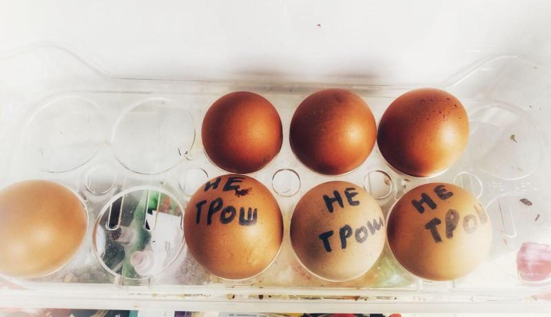 Картинка из холодильника. Семейный архив