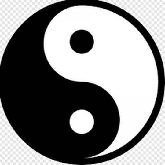 Символ Тай Цзи, Ян - Инь, Полярность Двух начал.
