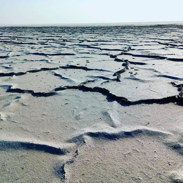 Аральская соль